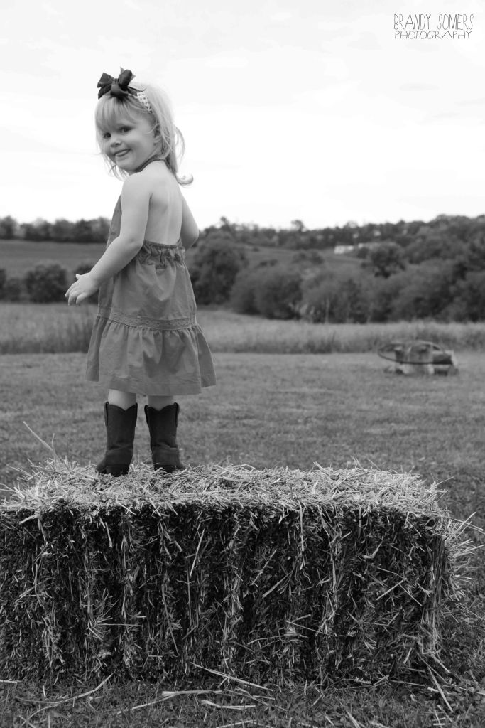 bsomeIMG_6169bw